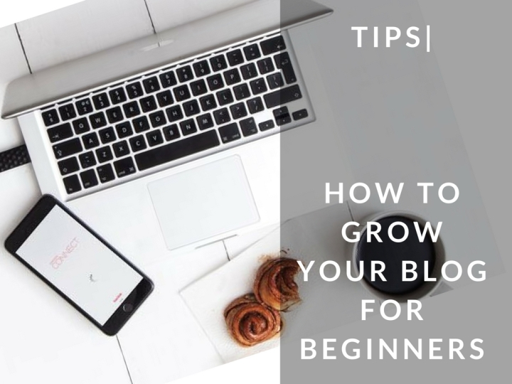 TIPS| How to Grow your Blog in 6 Easy Steps for Beginners