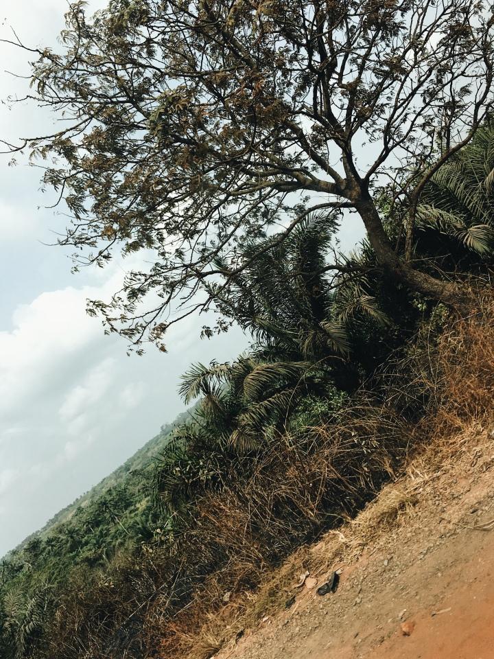 Travel photography – Do's and Don'ts, thisthingcalledfashionn